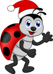 Poster Lieveheersbeestjes funny lady bug cartoon xmas