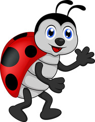 Foto op Canvas Lieveheersbeestjes funny lady bug cartoon
