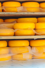 Storage of ripening Dutch yellow cheese