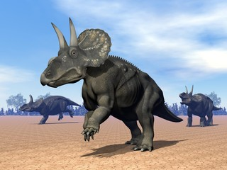 Dinoceratops dinosaur in the desert - 3D render