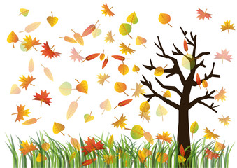 Colorful autumn leaves on the green grass and tree illustration