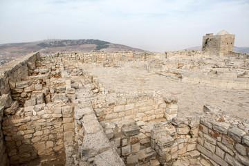 Samaritan Mount Greizim