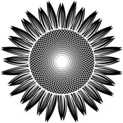 sunflower silhouette vector