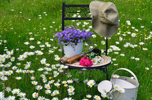 garten stuhl wiese blumen stockfotos und lizenzfreie. Black Bedroom Furniture Sets. Home Design Ideas