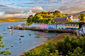 view on Portree, Isle of Skye, Scotland Wall mural