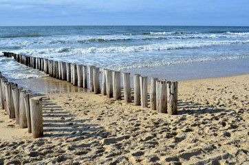 Canvas Print - breakwaters on the beach at the north sea in Domburg Holland