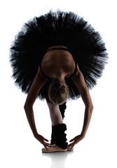 Tancerka baletowa - 53880446