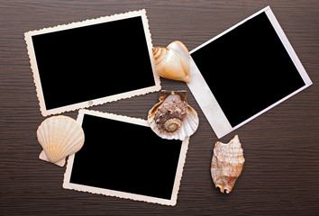 Photo frame with sea shells on wood background