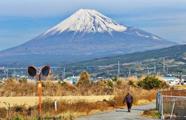 Wall Mural - Fuji
