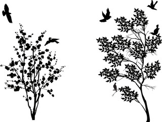 birds near two small trees isolated on white