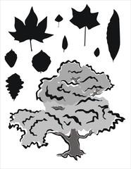 hojas y árbol