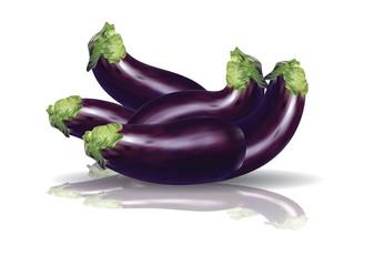 Purple Eggplants aubergine with reflection