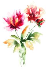 Beautiful decorative flowers
