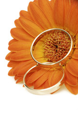 Summer Wedding Flower with rings