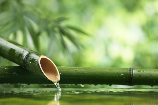 Natural  bamboo fountain