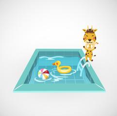 giraffe and a swimming pool vector