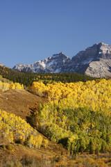 Wall Mural - Mount Sneffels Range, Colorado