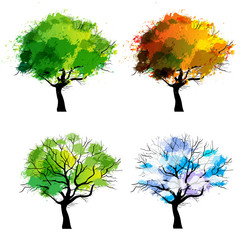 Trees of four seasons - spring, summer, autumn, winter