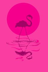 Illustration of flamingo at sunset or sunrise