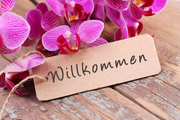 Printed roller blinds Orchid Willkommen!