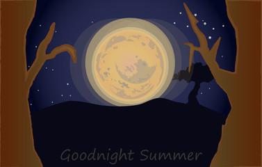 Goodnight summer