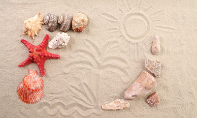 composition of sand, shells, stones and starfish