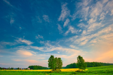 Summer landscape with a bright sky at sunrise