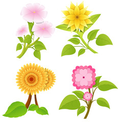 Decorative Flowers Vectors