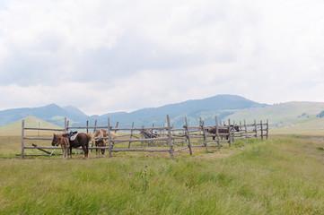 Fonte Vetica Ranch, Gran Sasso, Abruzzo, Italy