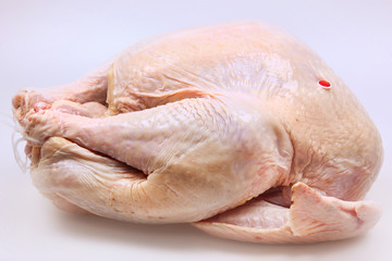 Whole Raw Turkey