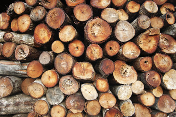 Close up from a pile of wood for fire in winter