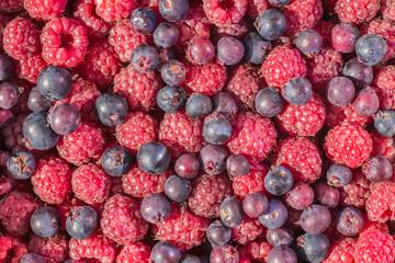 fresh raspberry background