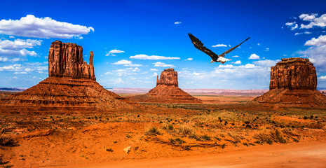 Photo sur Plexiglas Orange eclat Monument Valley