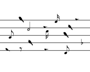 bird music note