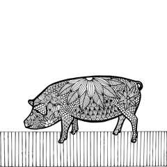 Black Pig- Chinese zodiac