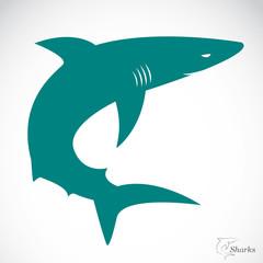 Vector image of an shark