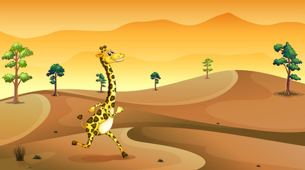 A giraffe running at the desert