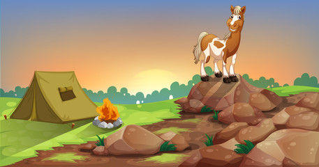 A horse above a rock near a camping tent