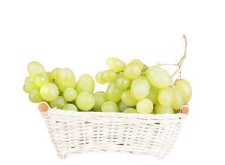 white grape isolated