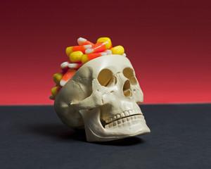 Candy Brain Skull