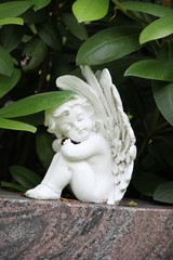 Blätter streicheln tröstend ruhenden Engel auf Grabstein