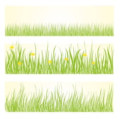 Set of green grass background