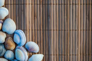 seashells on wooden mat