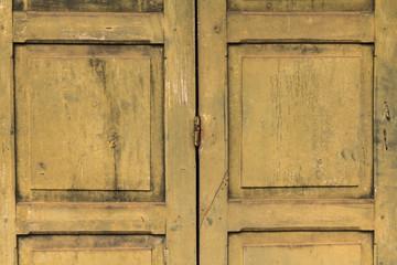 Green vintage wooden door