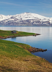 Wall Mural - Iceland summer landscape. Fjord, house, mountains