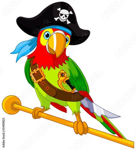 Fototapete Pirate  Parrot