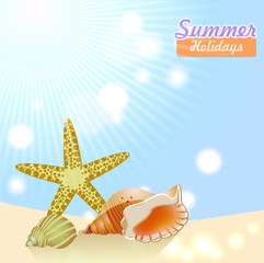 background with sun and seashells