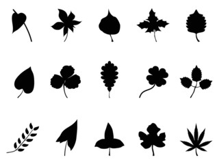 black leaves Silhouettes set