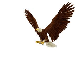 eagle extreme landing