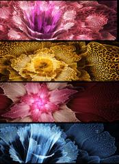 Wall Mural - Abstract fractal flower